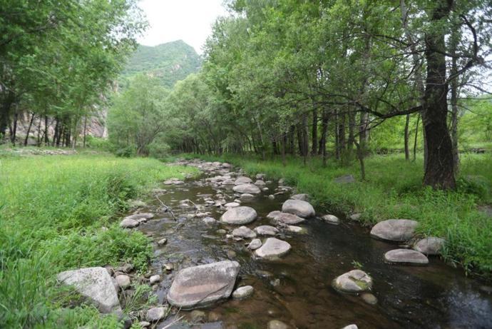 北京最野河道将建露营基地!河堤是土坡,过河架木桥[墙根网]
