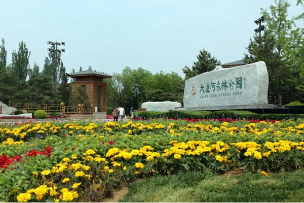6月20日起大运河森林公园实行预约入园[墙根网]