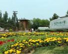 6月20日起大运河森林公园实行预约入园