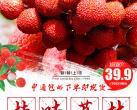 """【荔枝界""""爱马仕""""】枝头鲜甜到舌尖~仅39.9元=5斤!门市价198元桂味荔枝,核小肉多一口爆汁!北京立拍立发,忘抢馋一年~"""