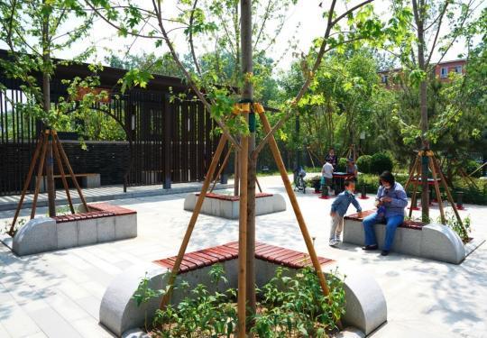 """广外有""""荷香!北京西城这个街道今年还将建多个口袋公园"""