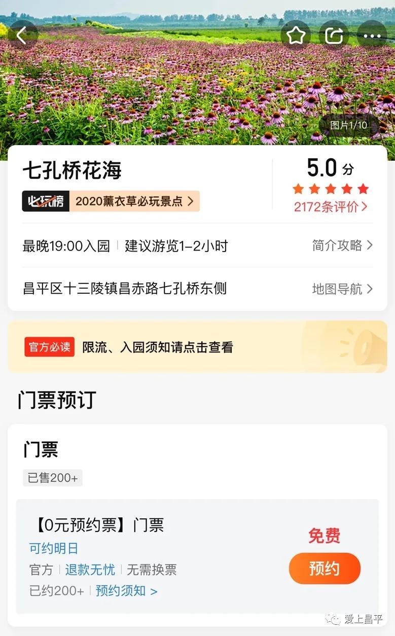 """明天起,七孔桥花海启动""""预约购票"""",免费入园![墙根网]"""
