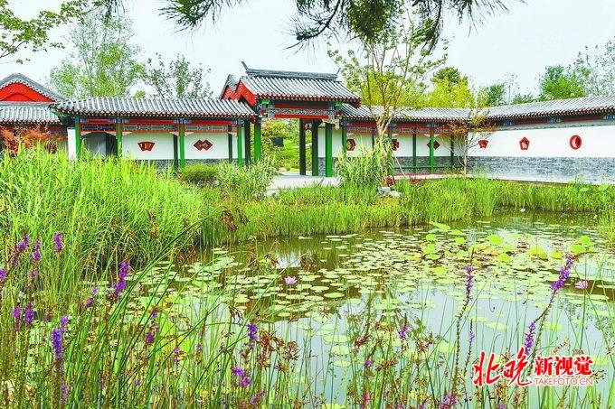 北京副中心城市绿心9月底开园,提前4个月落成,实现森林入城[墙根网]