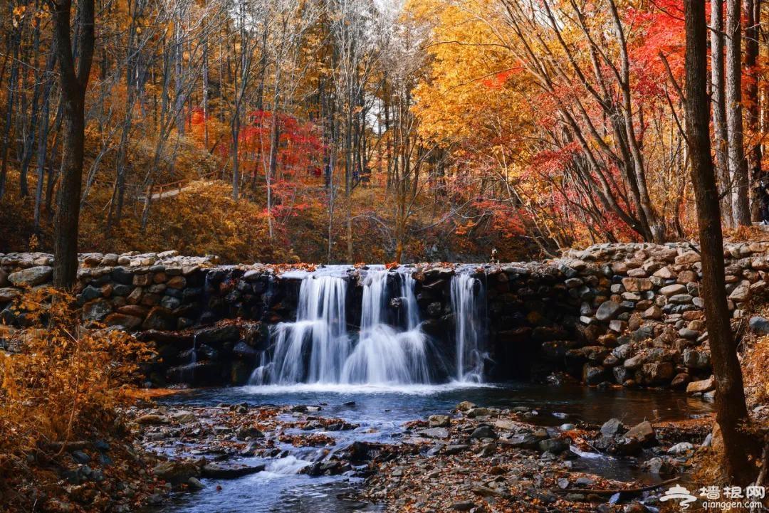 秋天最美的8条自驾路线!9、10月美成天堂,错过了就要再等一年![墙根网]