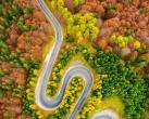 秋天最美的8條自駕路線!9、10月美成天堂,錯過了就要再等一年!