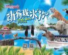 2020上海动物戏水节时间+地点+门票+交通