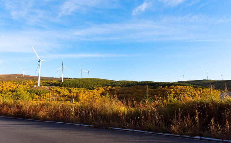 持续一整月,翠云山森林风景区金秋麓活季抓住秋日最后的美丽[墙根网]