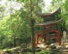 香山公园4处新亭景观亮相!名字都太美了