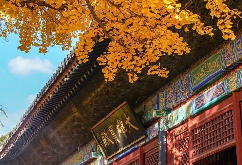 北京出发,自驾最美国道!2123公里世界级景观长廊来了[墙根网]