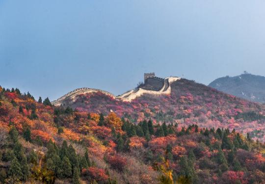 2020北京八达岭森林公园红叶节攻略(时间+门票)
