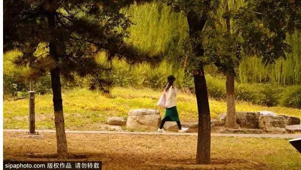 10月北京最佳小众旅行地!惊艳了整个秋季[墙根网]