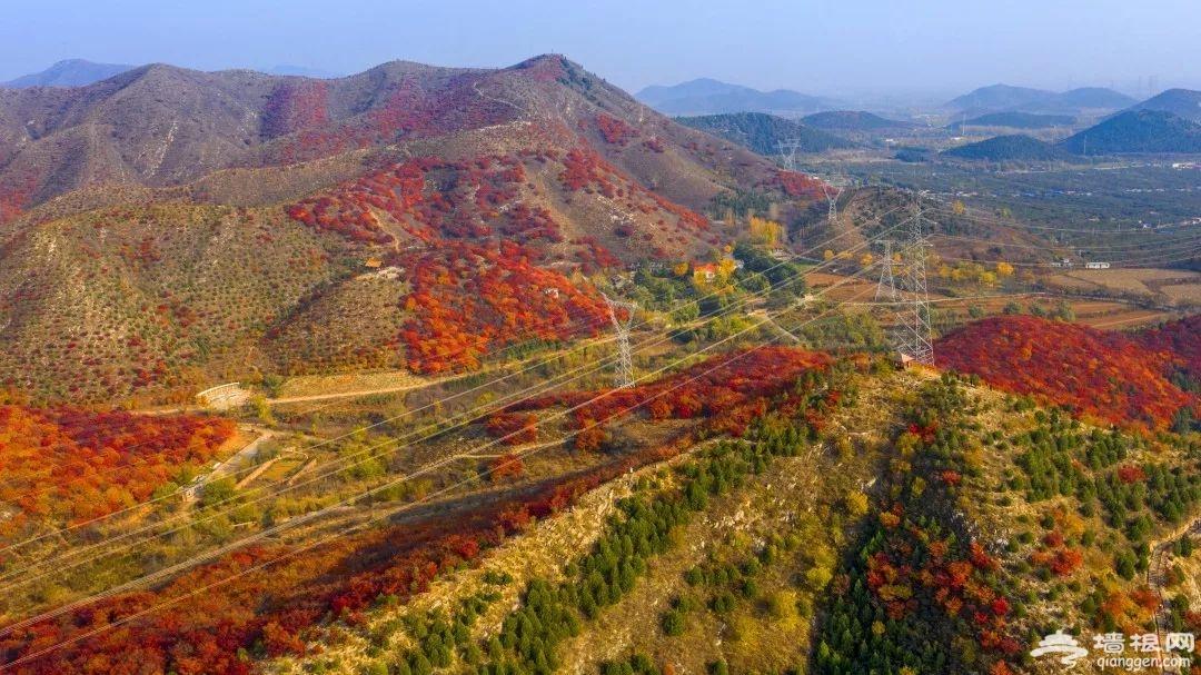 京郊顺义舞彩浅山开放,预计月底红叶进入最佳观赏期![墙根网]