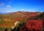 京郊顺义舞彩浅山开放,预计月底红叶进入最佳观赏期!