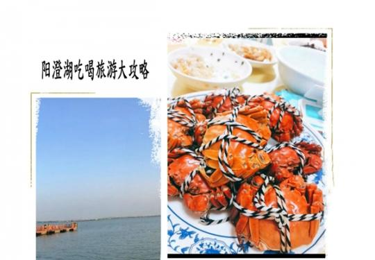 苏州阳澄湖吃大闸蟹的地方哪里好,吃货也能吃到满足!