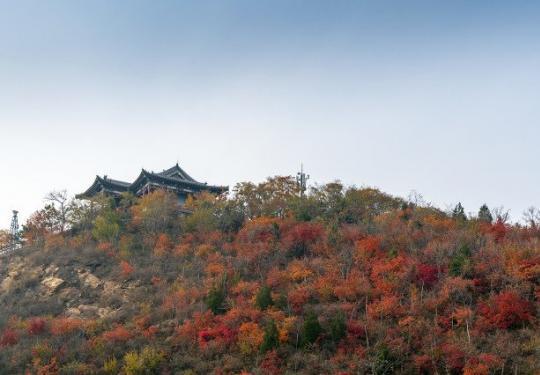 北京北宫国家森林公园红叶红了吗?观赏时间及攻略一览