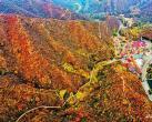 叠翠流金!北京门头沟这个村的满山红叶等你来