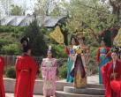 今年洛阳牡丹花会,龙门东山牡丹园又将盛装亮相