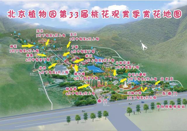 北京植物园桃花节