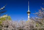 2021京津冀旅游一卡通又添新景区,中央电视塔、黄金寨、九龙峡等6景区重磅加入