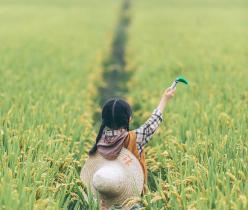 【怀柔】【暑期预售】HiMaMa亲子农场特惠房券,宫崎骏童话田园,3种房型任选+2大1小自助早餐+亲子主题自然活动,精致午后花房DIY+亲子农耕体验+超大户外野趣无动力设施+ 萌宠乐园亲密互动,有效期到10月30日
