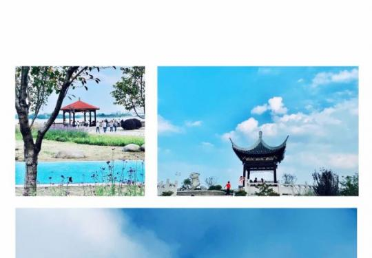 陽澄湖吃蟹攻略,陽澄湖哪里可以吃到正宗的清蒸大閘蟹?