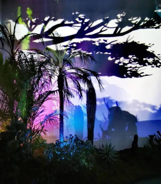 松江人必玩!首个花植幻境互动光影展震撼来袭![墙根网]